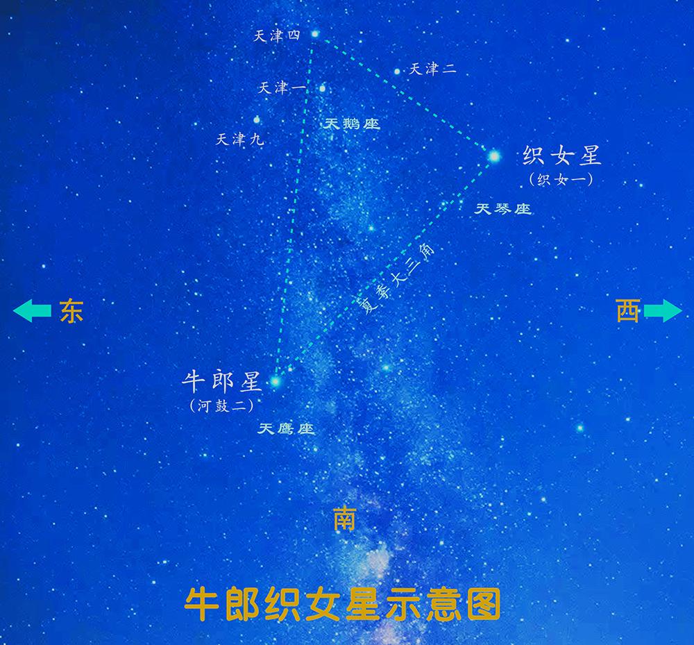 """七夕之夜,和你的最爱一起看星星""""拍拖"""""""